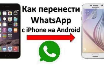 Как перенести WhatsApp с iPhone на Android