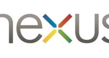 Новые сведения о бюджетном Google Nexus
