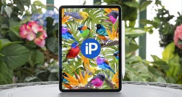 iPad Pro 2018 мощный, тонкий, изящный, но не прочный